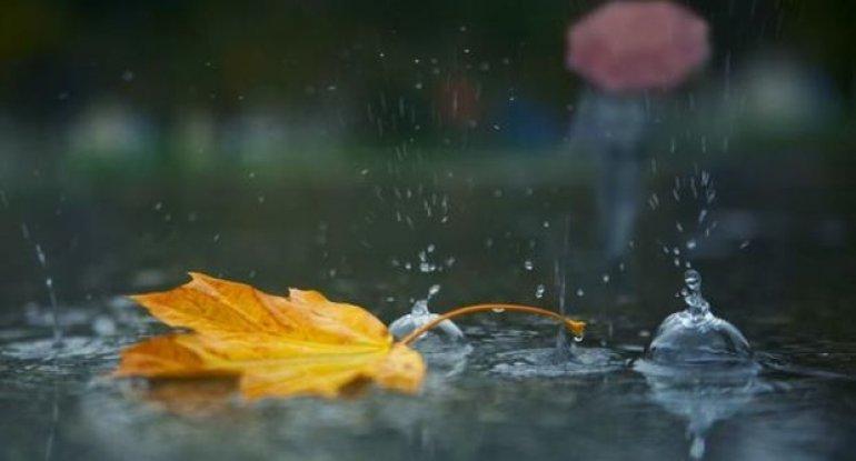 Bu günün havaı: Duman, yağış, külək
