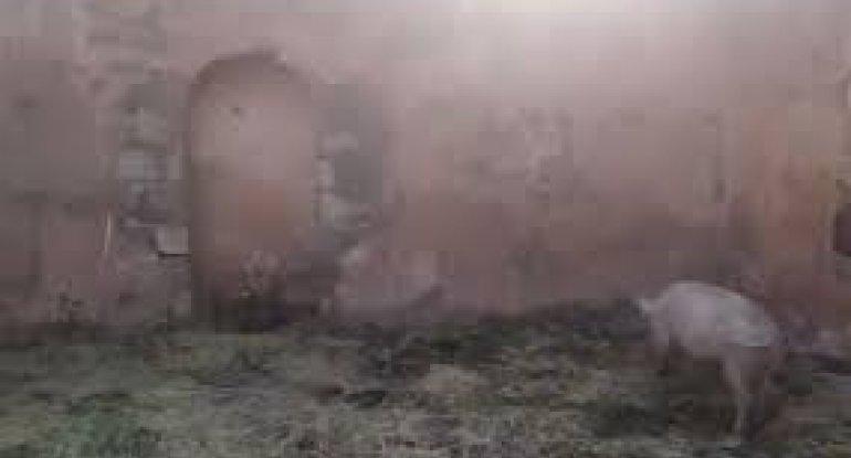 Ermənilər 300 illik məscidimizi bu hala salıblar - ÖZƏL VİDEO