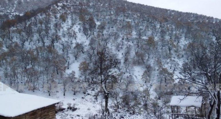 Cəlilabada ilk qar yağdı - FOTO