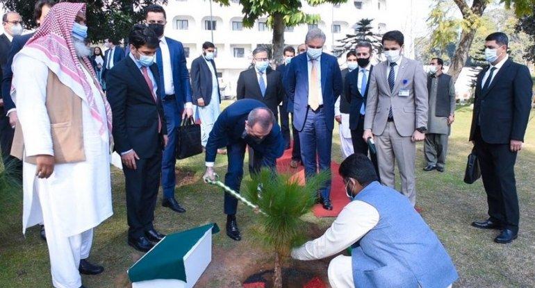 Ceyhun Bayramov Pakistan XİN-in həyətində ağac əkib - FOTO