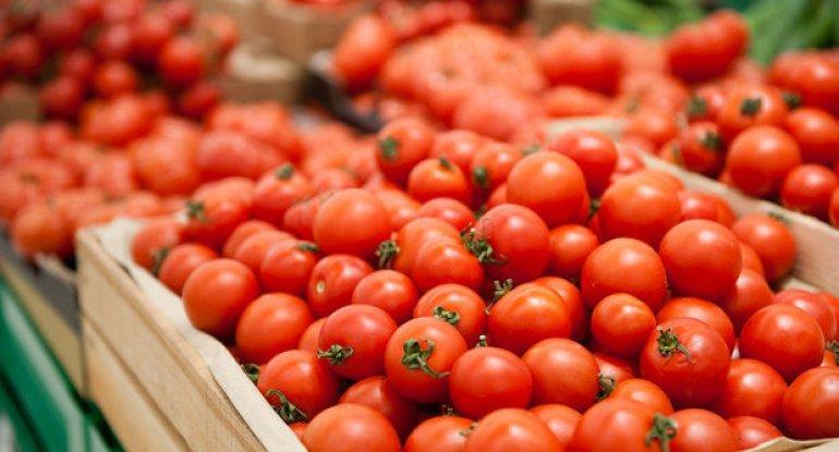 Azərbaycan qadağalara baxmayaraq pomidor ixracında rekord vurub