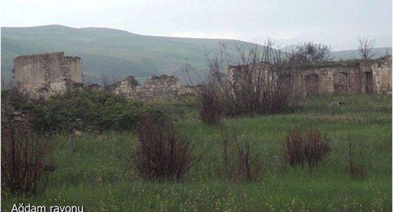 Ağdamın Qarapirimli kəndindən görüntülər
