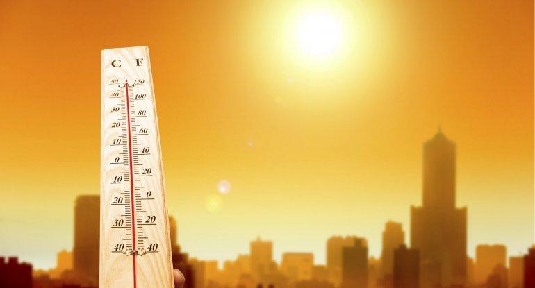 Kanadada 84 ilin rekord istisi qeydə alınıb